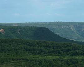 Visão da Chapada do Araripe. Verde depois de uma pequena chuva.